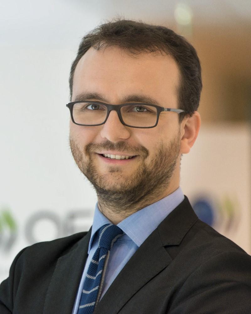 OECD-Ökonom Andrea Garnero